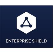 DJI Enterprise Shield Basic Renew (Matrice 300 RTK)